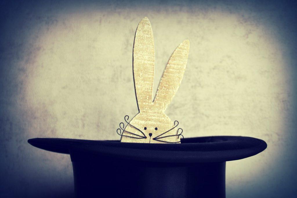 ארנב בכובע