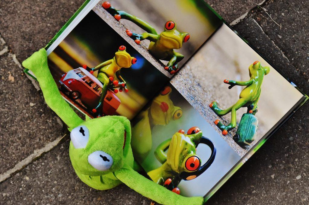 תמונות של צפרדעים